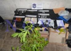 Los detectives secuestraron 325 gramos de clorhidrato de coca�na, distribuidos en envoltorios de nylon, dos tizas de coca�na repartidas en 19 tubos cil�ndricos de color naranja y de cierre herm�tico. (Foto: NOVA)