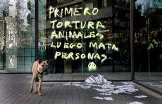 El pedido es para que se cierren los centros de experimentaci�n animal.