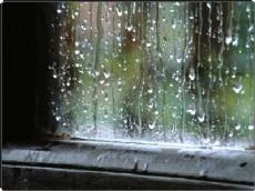 Lluvias en La Plata.